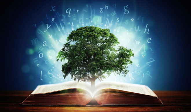 Branches and Traditions of Astrology